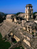 High Angle View of the Palace (El Palacio)  Palenque  Mexico