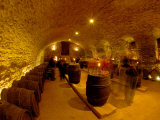 Wine Cellar of Chateau de Pierreclos  Burgundy  France
