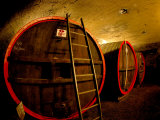 Wine Barrels in the Cellar of Chateau de Cercy  Burgundy  France