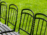 Park Benches in Palace Gardens  Vienna  Austria
