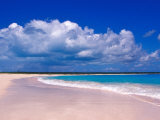 Pink Sand Beach  Harbour Island  Bahamas