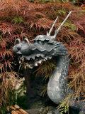 Dragon Head  Chingo-Do-Ji Temple  Asakusa  Tokyo  Japan