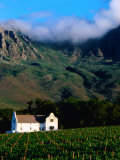 Cape Dutch Colonial Manor House and Vineyard with Mountain Backdrop  Dornier  South Africa