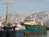 Ships in Reykjavik Harbour  Reykjavik  Iceland