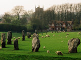 Section of 5500 Year Old Stonecircle Enclosing Village  Avebury  United Kingdom