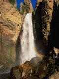 Rainbow Over Tower Falls  Yellowstone National Park  USA