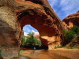 Hiker Underneath Coyote Natural Bridge  Coyote Gulch Hike  Glen Canyon National Recreation Area