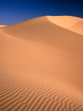 Algodones Dunes in Imperial Sand Dunes Recreation Area  California  USA