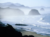 Overhead of Walkers  Cannon Beach  Ecola State Park  USA