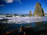 Rialto Beach  Rock Formations and Driftwood in the Wet Sand in Olympic National Park  Washington