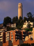 Apartment Buildings with Coit Tower Behind  San Francisco  USA