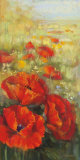 Red Poppy Panel
