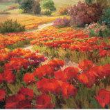 Claret Blooms