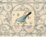 Songbird Etching II