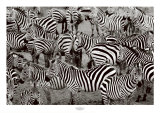 Zebra Abstraction