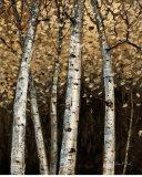 Shimmering Birches II