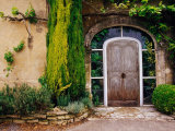Greenery Surrounding Wooden Door  Provence  France