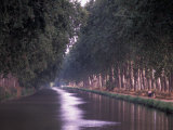 Canal du Midi  Herault  Languedoc  France
