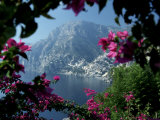 Positano and the Amalfi Coast through Bougainvilla Flowers  Italy
