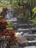 Spa and Gardens of Tabacon Hot Springs  Costa Rica