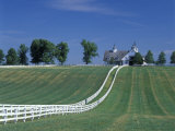 Manchester Horse Farm  Lexington  Kentucky  USA