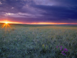 Prairie Sunset near Culbertson  Montana  USA