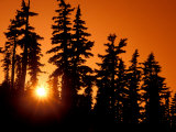 Orange Sunset in the Wilderness Around Mt Jefferson  Oregon Cascades  USA