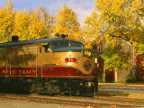 Napa Valley Wine Train Rolls through Rutherford  California  USA