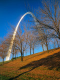 Autumn Trees Below Gateway Arch  Jefferson National Expansion  St Louis  Missouri  USA