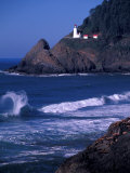 Crashing Waves and Sea Lions  Heceta Head Lighthouse  Oregon  USA