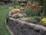 Ferris Perennial Garden  Spokane  Washington  USA