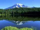 Reflection Lake  Mt Rainier National Park  Washington  USA