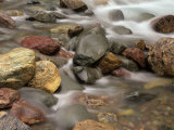 Stones in the Creek Below Baring Falls  Montana  USA