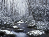 Cosby Creek in Winter  Great Smoky Mountains National Park  Tennessee  USA