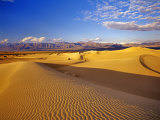 Mesquite Flat Sand Dunes  Death Valley National Park  California  USA