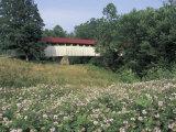 Old Town Bridge near Greenup  Kentucky  USA