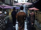 Geishas Carry Umbrellas of Oiled Japanese Paper Wearing Geta Walking in Rain  Gion Geisha Quarter