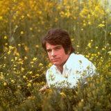 Actor Warren Beatty Sitting in Field of Flowers
