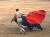Bullfighter Antonio Ordonez Making Pass at a Bull