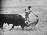"Spanish Matador Antonio Ordonez Executing Left Handed Pass Called ""Pase Natural"" During Bullfight"
