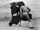 Matador Julian Marin Facing Bull in Ring During a Bullfight Celebrating the Fiesta de San Ferman