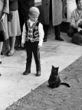 "Little Black Kittens Waiting for Audition for Movie ""Tales of Terror"" in Hollywood"