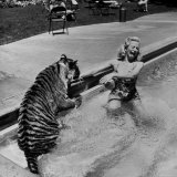 Actress Marilyn Maxwell Playing with a Tiger in a Pool