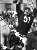 Football: Chicago Bears Dick Butkus No51 in Action  Blocking Passing Attempt Vs La Rams