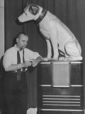Jose Iturbi Standing Beside Listening Dog Trade Mark of RCA Victor