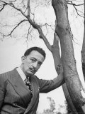 Surrealist Artist Salvador Dali
