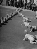 Babies Crawling Toward a Mobile Row of Stuffed Rabbits During the 8th Annual Diaper Service Derby