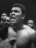 World Heavyweight Champion  Cassius M Clay  After Winning Bout Against Cleveland Williams