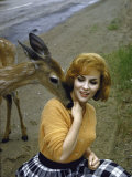 Gina Lollobrigida Feeding and Petting a Fawn