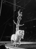 Ringling Brothers' Barnum and Bailey Circus Performers Riding on Back of Horse